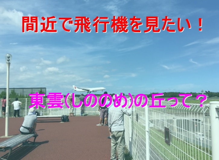 成田に来たら飛行機が観たい!成...